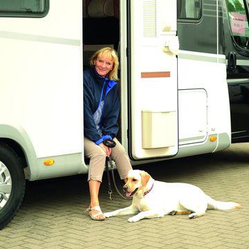 Reisen mit dem Hund